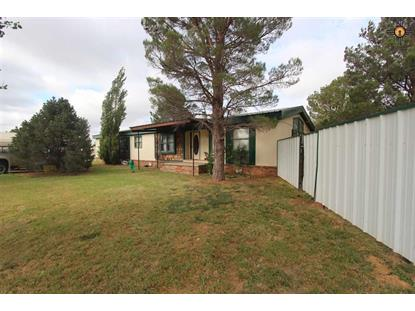 126 Highlands, Portales, NM