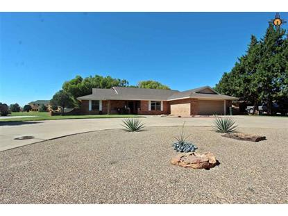 421 Diamondhead, Clovis, NM