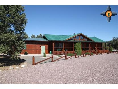 173 Apache Pass, Quemado, NM