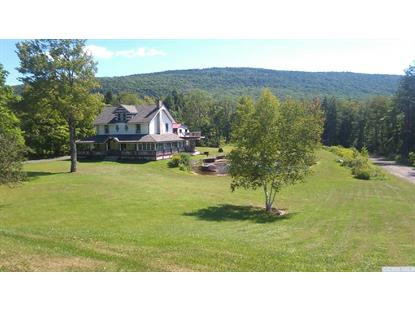 5375 Route 23A , Haines Falls, NY