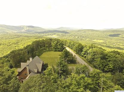 158 Buckskin Loop  Windham, NY MLS# 114215