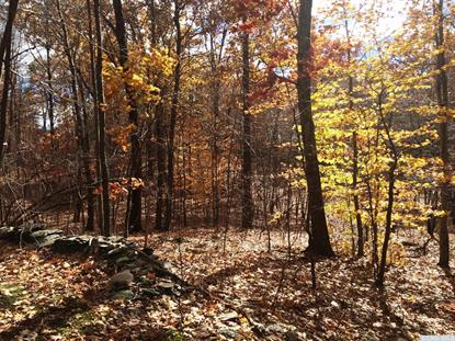 1-Lot Stone Gate off Birch Hill Road Craryville, NY MLS# 114629