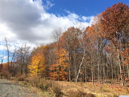 9-Lot Stone Gate Off Birch Hill Road Craryville, NY MLS# 114632