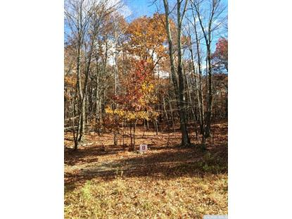 8-Lot Stone Gate off Birch Hill Road Craryville, NY MLS# 114633