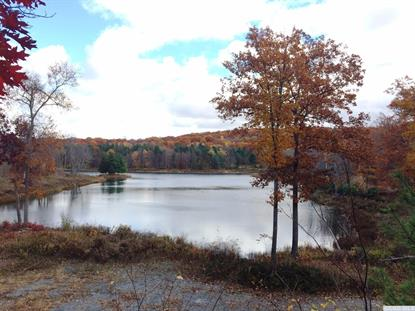 6-Lot Stone Gate off Birch Hill Road Craryville, NY MLS# 114638