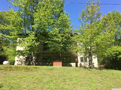 86 Lake Shore Acres Road Copake, NY MLS# 120951