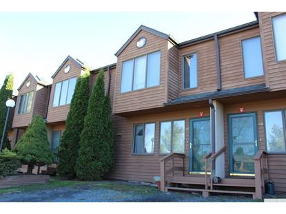 47 Quads Way  Windham, NY MLS# 123640