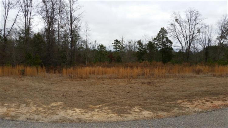 Lot 1 HIDDEN LAKE DRIVE, Tallassee, AL 36078