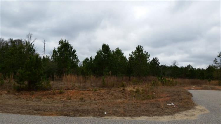 Lot 16 HIDDEN LAKE DRIVE, Tallassee, AL 36078