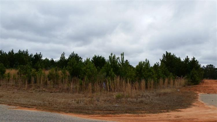 Lot 20 HIDDEN LAKE DRIVE, Tallassee, AL 36078