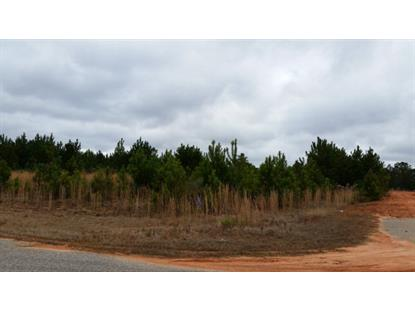 Lot 20 HIDDEN LAKE DRIVE, Tallassee, AL