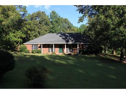 4067 LEE ROAD 0175 ROAD, Salem, AL