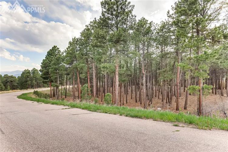 17450 Minglewood Trail, Monument, CO 80132