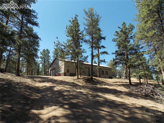 251 County 31 Road, Florissant, CO 80816