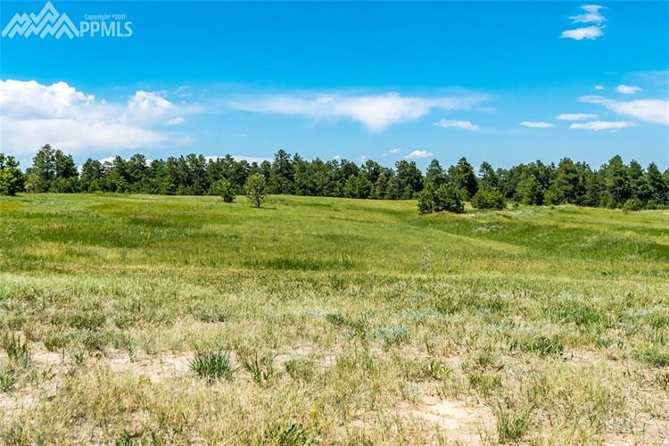 17011 Jackson Ranch Court, Monument, CO 80132