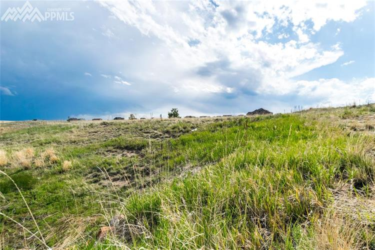 12070 Silver Concho Trail, Elbert, CO 80106