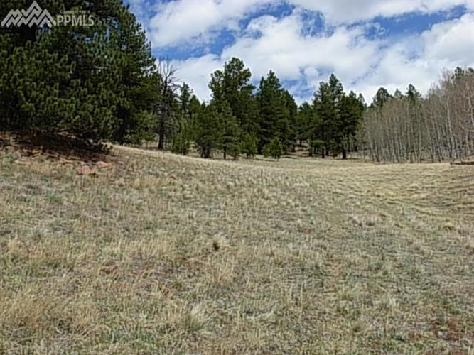 6901 W Highway 24 Highway, Divide, CO 80814