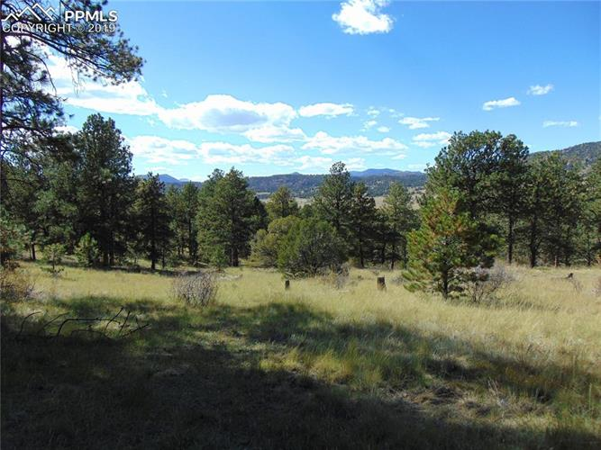 653 Lakeview Forest Heights, Florissant, CO 80816 - Image 1