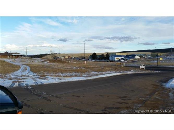 14 N Hybrook Road, Divide, CO 80814