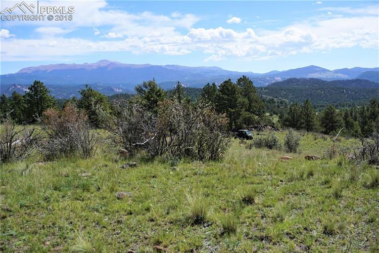 TBD County 12 Road, Florissant, CO 80816 - Image 1