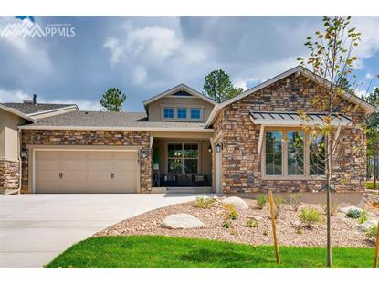 16367 Woodward Terrace, Monument, CO