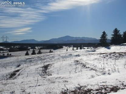 2131 White Cliff Way Monument, CO MLS# 1424968