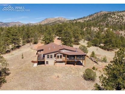 99 Corral Circle Florissant, CO MLS# 1681243