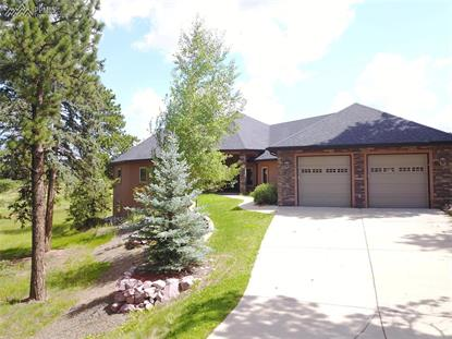 1423 Masters Drive Woodland Park, CO MLS# 1965989