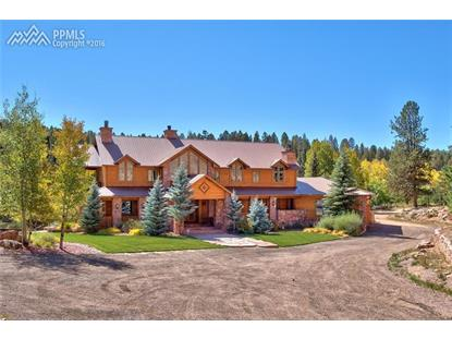 10 Kutsu Ridge Road Florissant, CO MLS# 2059449
