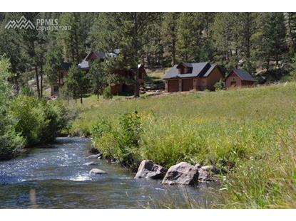 89 Ranch View Road Florissant, CO MLS# 2427019