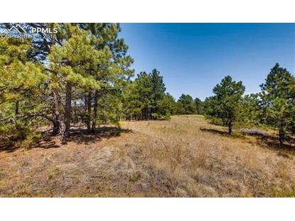 754 Tall Timber Lane Monument, CO MLS# 2909436