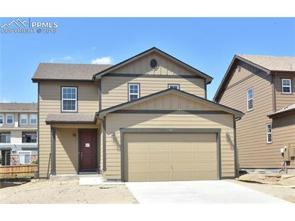427 Tippen Place, Castle Rock, CO