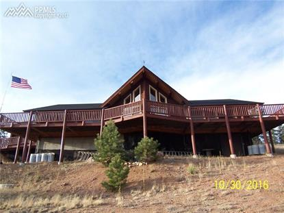 361 Crystal Peak Road Florissant, CO MLS# 3047584