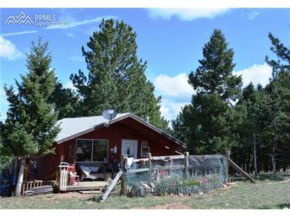 425 Maid Marian Drive Divide, CO MLS# 3157920