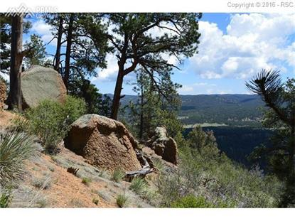 29545 N Highway 67 Highway Woodland Park, CO MLS# 3425151