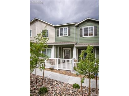 3157 Wild Peregrine View Colorado Springs, CO MLS# 3510386