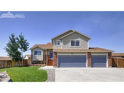 8427 Crossfire Court, Colorado Springs, CO