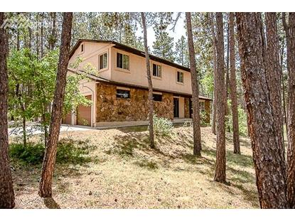 19335 Knotty Pine Way, Monument, CO