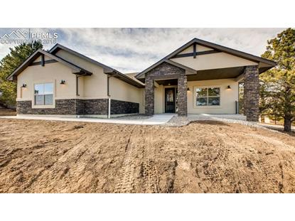 19720 Furrow Road Monument, CO MLS# 4895821