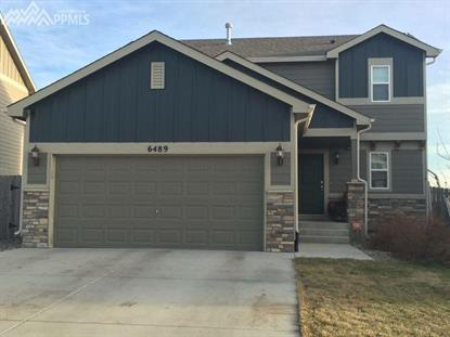 6489 Tranters Creek Way, Colorado Springs, CO