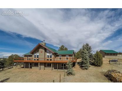 904 Old Ranch Road Florissant, CO MLS# 6385003