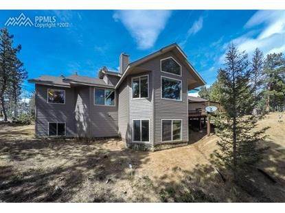 443 Snowberry Creek Road Florissant, CO MLS# 7244370