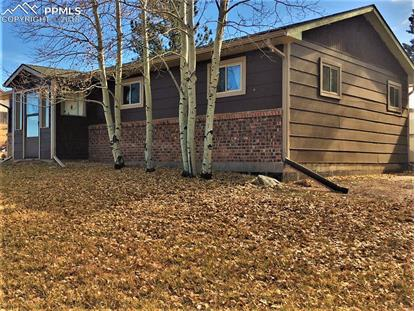 246 Maid Marian Drive Divide, CO MLS# 7662377