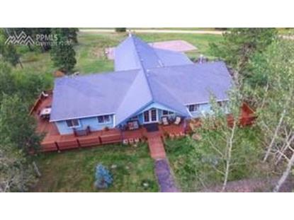 266 University Drive Woodland Park, CO MLS# 7930389