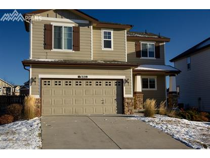 1339 Yellow Granite Way, Monument, CO