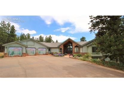 506 Mills Ranch Road Woodland Park, CO MLS# 8496129