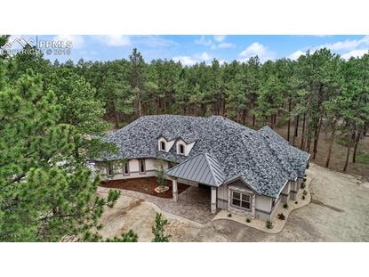 1510 Trumpeters Court, Monument, CO