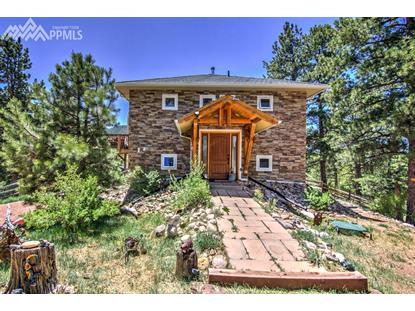 400 Cherokee Place, Florissant, CO