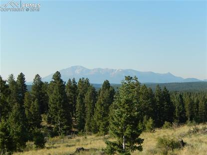 TBD Being Verified Road Woodland Park, CO MLS# 9324776