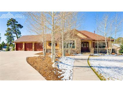 17610 Pond View Place, Colorado Springs, CO